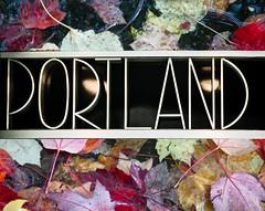 Metal Portland Leaves Mix - Krita (Orbmiser) Tags: city leaves metal oregon portland nikon name letters application layers editing opensource krita d90 55200vr