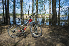 a nice day (alexeybahmetyev) Tags: summer nature bicycle forest nikon estate russia viaggio bosco bicicletta trevel   d3300