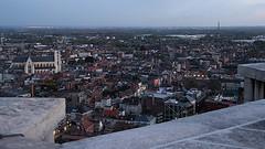 vanop skywalk Sint-Romboutstoren (mechelenblogt_jan) Tags: mechelen skywalk sintromboutstoren olvoverdedijlekerk