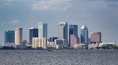 Tampa Skyline (Vimlossus) Tags: tampa florida