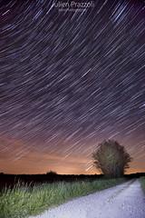 Circumpoaire de Mai (Julien Prazzoli) Tags: sky night star voie toiles milkyway lacte circumpolaire circompolaire