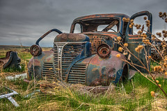 Reaching For The Now (Wayne Stadler Photography) Tags: cars abandoned rust farm rusty weathered trucks aged discarded derelict automobiles photomatix rustographer travelvehicles