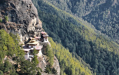 tigers nest monastery, bhutan (xtremepeaks) Tags: travel cliff forest site asia bhutan buddhist famous monastery paro himalayas takhsang