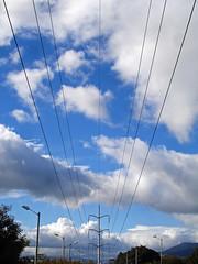 No. 1121 - 2 de junio/16 (s_manrique) Tags: postes arboles cables cielo nubes