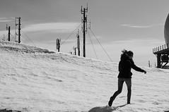 (Leo Hernn) Tags: portrait west animals iceland indoor roadtrip stable westfjords