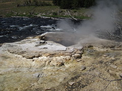 East Sentinel Geyser (early afternoon, 2 July 2016) 1 (James St. John) Tags: east sentinel geyser geysers morning glory group upper basin yellowstone wyoming hotspot volcano
