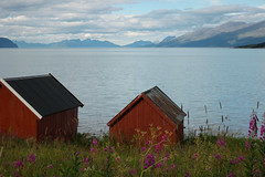 deux (mimu_13) Tags: norvge norway norge nx500 samsungnx troms maisonrouge redhouse maison house hus