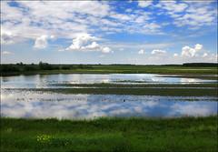 Spring (Katarina 2353) Tags: vojvodina landscape serbia srbija srem katarina2353 katarinastefanovic