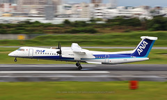Bombardier, DHC-8-402, JA843A, RJOO, Osaka Itami, Japan (Daryl Chapman Photography) Tags: ja843a ana nh landing arrival 32l canon 5d mkiii is ii 70200l f28 plane planes aviation planespotting departure flight commercialaviation civilaviation great fly flying sky dslr hongkongspotters aviationnut daryl chapman japan osaka itami itm rjoo ahkgap osakainternationalairport anawings eh akx 4084 dhc8402 bombardier
