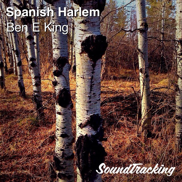 Loved your music Mr. Ben E. King sir!❤️✨❤️✨❤️✨❤️ Spanish Harlem 🌹🌹🌹 Love out dear friends and loved ones! Have a special Saturday! 💟🎶💟🎶:heart_d