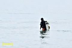 Out for work (lantaw.com) Tags: sea beach divers diving coastal tuka 2015 sarangani kiamba tukamarinepark