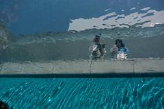 DSC_7789.jpg (d3_plus) Tags: street sky nature japan museum walking spring scenery bokeh outdoor fine daily  streetphoto gw    dailyphoto kanazawa  j4 thesedays ishikawa     fineday    21     nikon1 d700  21stcenturymuseumofcontemporaryartkanazawa  nikond700  nikonfxshowcase 1nikkorvr10100mmf456 1 nikon1j4