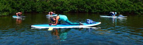 5-1-15-Paddleboard-Yoga-Teacher-Training-Sarasota-FL 32