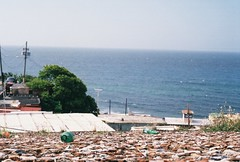 R1-03365-014A (nicool13) Tags: film beach rain forest 35mm puerto san fuji underwater juan puertorico el rico 400 elyunque flamenco yunque nglenn nicoleglenn facebookcomnicoleglennhouston