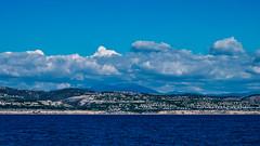 Coast (goodmarko) Tags: ocean california seagulls boats sailing pacificocean socal boating seals sealions sailboats whalewatching vsco vscofilm