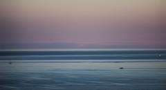 Lake Michigan (Speaking Lens) Tags: usa lake chicago abstract water america illinois michigan north greatlakes minimalistic