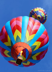 Temecula Valley Balloon and Wine Festival 2015 5.30.15 4 (Marcie Gonzalez) Tags: california above county ca blue light sky usa hot color colors festival america balloons festive fun fire photography fly us photo colorful riverside bright wine air united flames cluster north group balloon calif southern event flame socal cal photograph valley round states gonzalez hotairballoons temecula marcie 2015 so temeculaballoonwinefestival