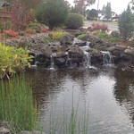 "Water feature, waterfall, water, pond, watersape, landscape, landscaping, rock water feature <a style=""margin-left:10px; font-size:0.8em;"" href=""http://www.flickr.com/photos/117326093@N05/18171033629/"" target=""_blank"">@flickr</a>"