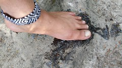 Barefooting and sap (bfe2012) Tags: boy tree feet nature forest freedom toe indian dirty barefoot barefeet tough soles sap anklet barefooted barefooting barefoothiking barefooter barefootlifestyle barefoothiker