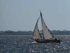 JD 4 at the IJssellake (Alta alatis patent) Tags: sailing jol jd4 ijssellake
