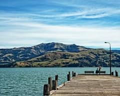 Lap Dance? (DASEye) Tags: ocean newzealand mountain mountains water harbor nikon harbour nz akaroa davidadamson daseye