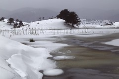 Zen impact... (RKAMARI) Tags: winter lake snow cold tree ice water frozen nationalpark seasons outdoor zen 2015