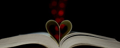 I Heart Bokeh (MissiibPics) Tags: red book pages bokeh bokehphotography