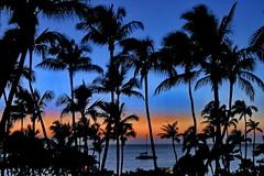 Maui - Evening Cocktail (gerard eder) Tags: world travel sunset usa beach america island hawaii evening sonnenuntergang united maui tropical states islas reise inseln archipel arquipelago