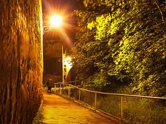 Walk-through-Corona..Spaziergang-durch-Corona(Kronstadt) (bcalin26) Tags: light man tree walking path