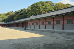 Chnagdeokgung ('gung' means palace) (thinklogically) Tags: nikon nikond70 culture palace seoul changdeokgung  1870mmf3545 changdukgung  nikon1870mmf3545 koreantraditional bundlekit