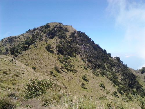 "Pengembaraan Sakuntala ank 26 Merbabu & Merapi 2014 • <a style=""font-size:0.8em;"" href=""http://www.flickr.com/photos/24767572@N00/27094582181/"" target=""_blank"">View on Flickr</a>"