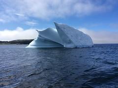 Iceberg (anng48) Tags: nlcanada icebergtwillingateatlanticoceannewfoundland