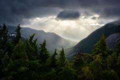 Passing Through (arturstanisz1) Tags: arturstanisz canada britishcolumbia mountains coastalmountains rain phototours photgraphy workshops outdoor landscape mountain serene
