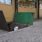 Bodega Cat thumbnail