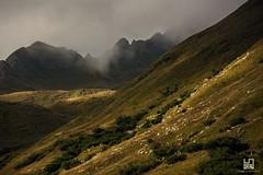 ERBA (Lace1952) Tags: pascolo montagna pecore gregge trasumanza luce sole tramonto nubi nebbie riale valformazza ossola vcopiemonte italia nikond7100 nikkor18300vr