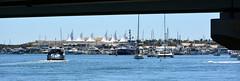 panDSC_0127 (LoxPix2) Tags: loxpix queensland southport surfersparadise beach river boat architecture building bridge australia 2016