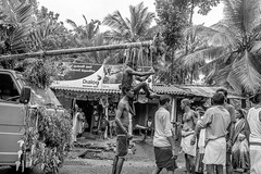 Tamil-SW-008 (gbauer211) Tags: srilanka prozession rituale hinduismus schmerzen tamilen
