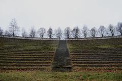 Anfiteatro, Poznań, Polska