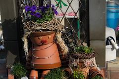 20150530-DS7_1861.jpg (d3_plus) Tags: street sea sky plant flower nature japan scenery daily telephoto bloom  tele streetphoto  tamron  kanagawa   dailyphoto 28300mm   thesedays  28300    tamron28300mm  tamronaf28300mmf3563   a061  telezoomlens d700  tamronaf28300mmf3563xrdildasphericalif nikond700  nikonfxshowcase a061n