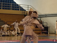 stefanou_15_5_2016_knockdown_106