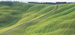 The edge of the world (agmarcon) Tags: green landscape tuscany cretesenesi