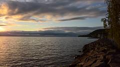 Division (J. Roseen) Tags: light sunset sky lake water clouds outdoor himmel shore serene vatten vttern solnedgng sj moln ljus huskvarna stilla lumia950 jrgenrosn
