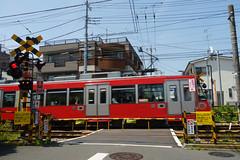 20160422 Gotokuji 6 (BONGURI) Tags: tokyo sony jp   setagaya tokyu  setagayaline     gotokuji    setagayacity tokyudentetsu rx100m3 tokyokyukokabushikigaisha