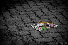 Abandoned (viktoria.czire) Tags: street blackandwhite abandoned monochrome trash magazine paper blackwhite nikon nikond5300