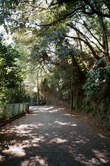 -6 (UME2nd) Tags: fujifilm japan natura classica
