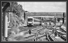 04.07.16 Bridging the Gap.. (Tadie88) Tags: nikond7000 nikon18200lens norwoodjunction london stations tracks signals platforms bridges blackwhite railwayviews