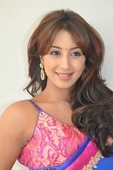 South Actress SANJJANAA PHOTOS SET-1 (12)