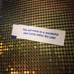 FOUND THIS #fortunecookie #fortune while MOVING into my SECOND wonderful new home in 6mos!   #GodIsGood @skyhousedallas (zaneology) Tags: zaneology zane aveton fabulous cookie fortune