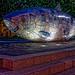 THE BIG FISH AT NIGHT [BY JOHN KINDNESS] REF-104721