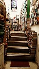 muitas histrias (luyunes) Tags: livro sebo livraria leitura leitor motomaxx luciayunes